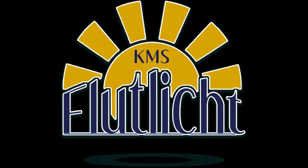 Logoerstellung - Logodesign für Bleuchtungsgeschäft mit Sonne und Schrift