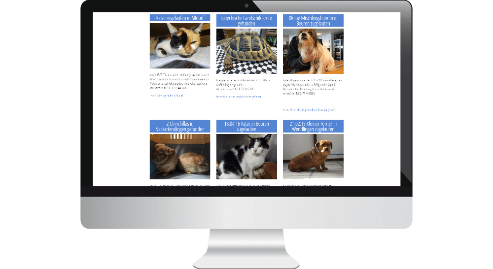 Tierschutz-Website, Design der Tiervermittlung