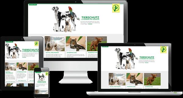 Webdesign-Ansicht mit verschiedenen Bildformaten